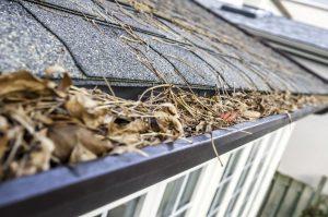 Spring Roof Maintenance Checklist