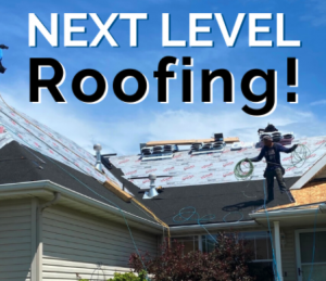 Read more about the article Next Level Roofing